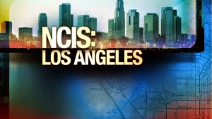 NCISLA Logo Photo Resized